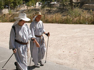 m bosco di san francesco pilgrimage st francis way