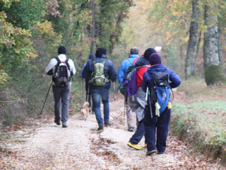 Stage 2 from Stroncone to Calvi dell'Umbria pilgrimage the Franciscan Protomartyrs' Way