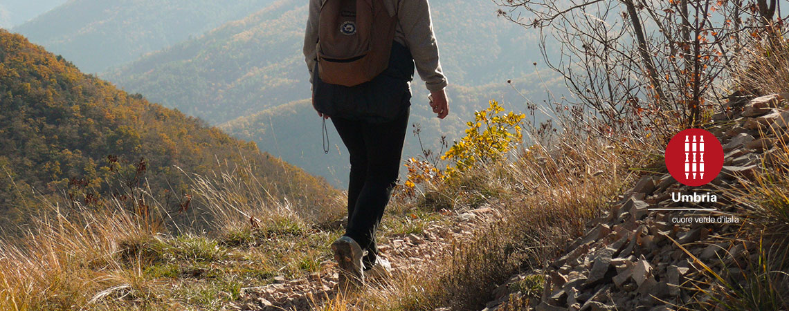 franciscan itineraries walking trails the route of st francis assisi pilgrimage