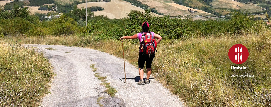 the way of saint Francis pilgrimage